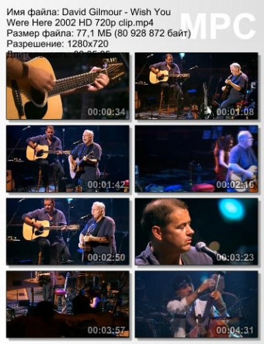 David Gilmour - Wish You Were Here 2002 (Live)